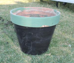 faerie green pot