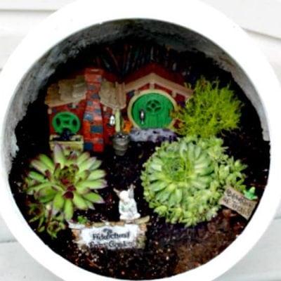 Container Sized Faerie Garden
