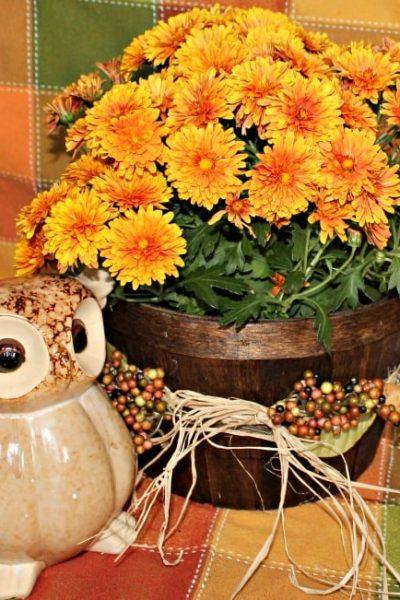 DIY, Baskets, Floral Arrangements, Decor, Fall
