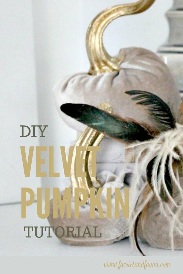 Close up of DIY velvet pumpkins wit real stems.
