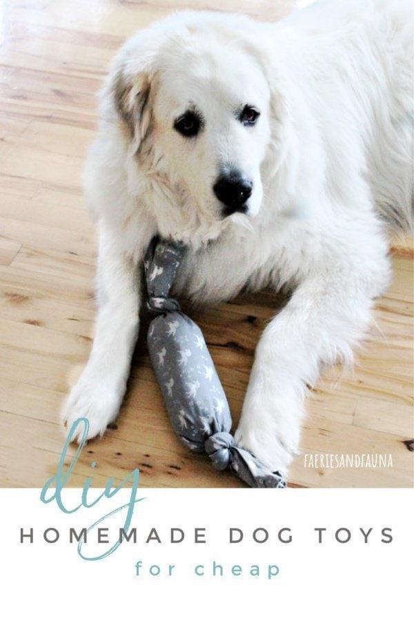 Stuffed DIY Dog Toy